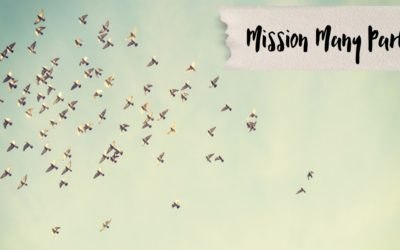 Mission Many Part 2: I