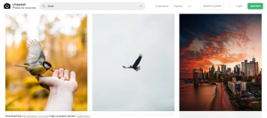free stock photos for websites
